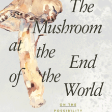 Book cover with image of mushroom