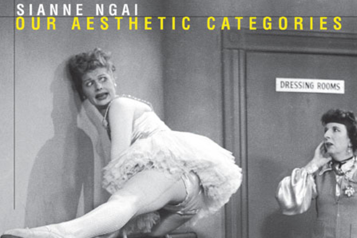 "Book Cover of Sianne Ngai's ""Our Aesthetic Categories: Zany, Cute, Interesting"""
