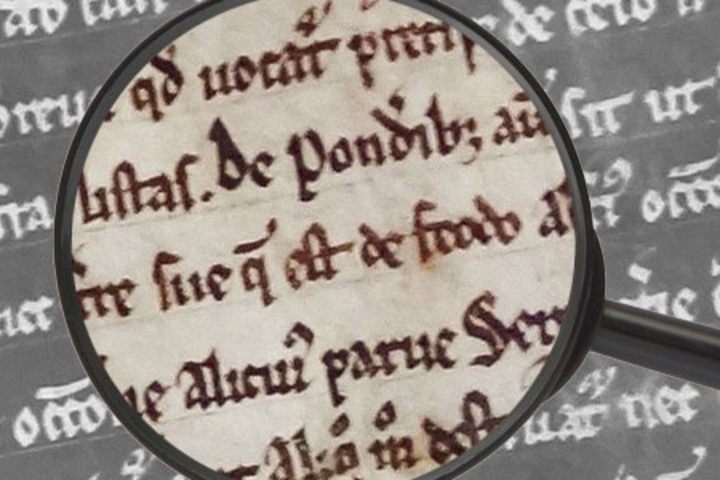 Literary scholar Elaine Treharne painstakingly examined every letter and punctuation mark of the Salisbury Magna Carta in making her discovery about the document's origin.
