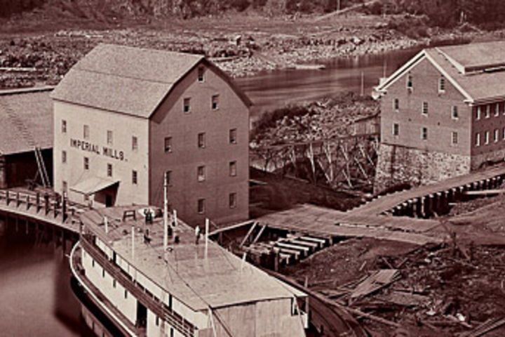 """Carleton Watkins """"Flour and Woolen Mills, Oregon City"""" (detail), 1867, from the album photographs of the Columbia River and Oregon."""